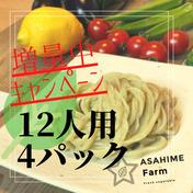 あさひめ生うどん『12人前4パック』 430g×4パック 加工品(麺類) 通販