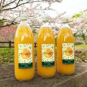 島恵自然農園 【農薬不使用】無添加果汁100%甘夏ジュース  6本 1000ml  6本