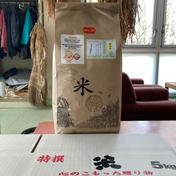 『みんなで頑張ろう米❗️』あきたこまち玄米5kg 5kg 秋田県 通販