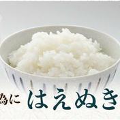 ※新米キャンペーンお味噌少量オマケつき/お米10kg(はえぬき) 10キロ 與惣兵衛