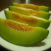 最終特別価格!高糖度が自慢のタカミメロン! 1.7キロ〜2キロ 果物 通販