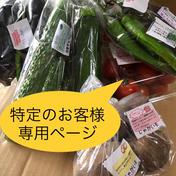 特定のお客様専用ページです。 6kg 果物や野菜などのお取り寄せ宅配食材通販産地直送アウル