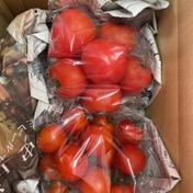 トマトの食べ比べセット 約1キロ 果物や野菜などのお取り寄せ宅配食材通販産地直送アウル