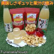 【父の日】美味しさギュッと果汁の恵み*B 2袋*4個*1本*1本 山形県 通販