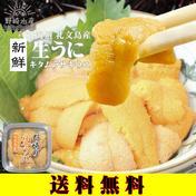 生うに(キタムラサキウニ) 40g 礼文島産 【送料無料】 40g 魚介類(ウニ) 通販