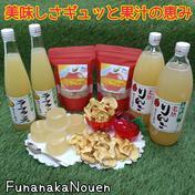 【父の日】美味しさギュッと果汁の恵み*A 2袋*4個*2本*2本 山形県 通販