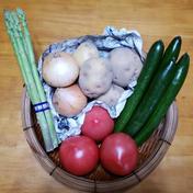ひとみ農園おまかせ野菜セット 約2㎏(内容によって差があります) 果物や野菜などのお取り寄せ宅配食材通販産地直送アウル