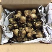蔬菜園湯澤 菊芋 1kg