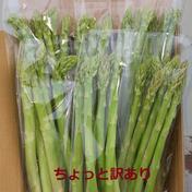 【朝採り】訳あり、あきらさん家のアスパラガス夏芽 2.4kg 訳あり 1.2kg x2箱 Lサイズ〜 野菜(アスパラガス) 通販
