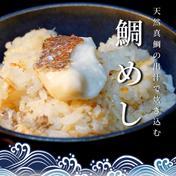 天然真鯛出汁の炊き込みご飯の素【2合用】 真鯛100グラム、出汁400グラム 魚介類(その他魚介の加工品) 通販