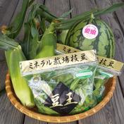 夏の最強セット スイカ&とうもろこし&枝豆 スイカ1個(2kg前後) とうもろこし4本 枝豆260g×2袋 果物や野菜などのお取り寄せ宅配食材通販産地直送アウル