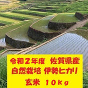 鶴ノ原北川農園の自然栽培「伊勢ヒカリ」玄米 10kg 米(玄米) 通販