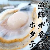 これが本物!漁師が喰うホタテ【10㎏】ヘラ付 10kg 青森県 通販