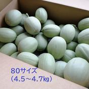 約4.5kg/80サイズ 子メロン 摘果メロン 浅漬けや粕漬けに いい食感です 4.5~4.7㎏ 石川県 通販