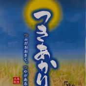 <精米>つきあかり10㎏(5㎏×2袋) 10㎏ 山形県 通販
