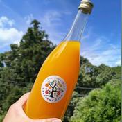 清見オレンジの果汁‼︎ 1本(720ml) 加工品 通販