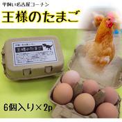 平飼い名古屋コーチン【王様のたまご】6個入り紙パック×2p 12個(1個当たり58~61g) 卵 通販