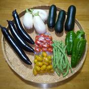 ブロフ野菜詰め合わせ 6種類1箱 果物や野菜などのお取り寄せ宅配食材通販産地直送アウル