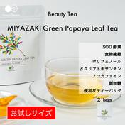 〜カラダが喜ぶ栄養満載〜MIYAZAKI Green Papaya Leaf Tea(ティーバッグ20個入り)【送料最安】 3.0g(1.5g×2袋) お茶(その他のお茶) 通販