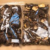 秩父産 こだわりの原木・天然栽培 干し椎茸(丸干し) 2袋セット (規格外・欠け・割れ品)  600g 埼玉県 通販