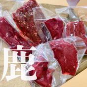 鹿肉各部位食べ比べセット750g 鹿肉750g 福岡県 通販