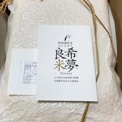 希夢良米 石川県特別栽培米コシヒカリ 10キロ 石川県 通販