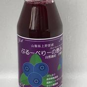 上野原ゆうきの輪 ブルーベリーの恵み 180mg瓶入り8本