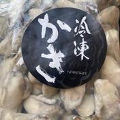 冷凍かき 内容総量1kg    魚介類(牡蠣) 通販