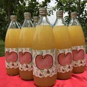 南信州産 100%リンゴジュース(ストレート) 1L  6本入 飲料(ジュース) 通販