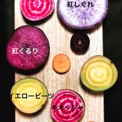 お試し/北海道産越冬(全て無農薬)野菜詰め合わせ 6kg程度 ショクラク