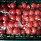 マルキュウフルーツ トマト四個入り✖10