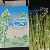 【朝採り】阿部農園の夏アスパラ 約1kg 果物や野菜などのお取り寄せ宅配食材通販産地直送アウル
