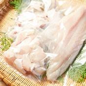 壱岐産高級 クエ鍋セット 1キロサイズ (3〜4人前) 約1キロ 長崎県 通販