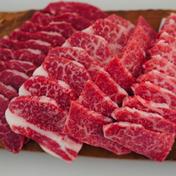 【お試し期間限定価格】佐賀県産和牛の希少部位焼肉食べ比べセット 2〜3人前 【お中元】 450g 佐賀県 通販