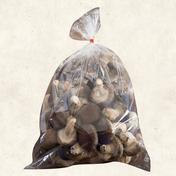 お得用椎茸1㎏【ネット限定】 1kg 野菜(きのこ) 通販