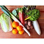 阿波ツクヨミファーム 【ゼロエネルギーCO2フリー】自然農野菜セット【Mサイズ】 想定重量5kg(旬菜8〜10品、重量は梱包内容により変動いたします)