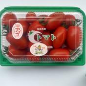 お得用!アイコ、イエローアイコ 約2㎏ 果物や野菜などのお取り寄せ宅配食材通販産地直送アウル