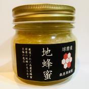 【球磨産】地蜂蜜 非加熱・無添加高濃度日本みつばち蜂蜜 250g 熊本県 通販