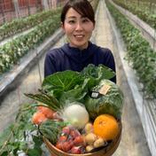 もぐはぐ農園 畑から採りたて発送!Ⓑ静岡厳選野菜セット(8品) 8品以上