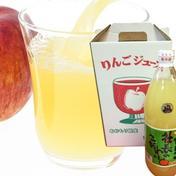 青森県産りんごジュース  1リットル 6本セット【サンふじ】 1リットル 青森県 通販