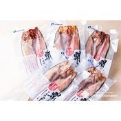 利尻島産 開きホッケ【5枚セット】 父の日 5尾 魚介類(その他魚介の加工品) 通販