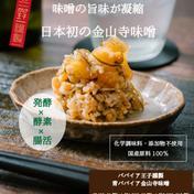 【今だけ期間限定】発酵×酵素のチカラ!日本初の青パパイア金山寺味噌 120g 加工品(その他加工品) 通販