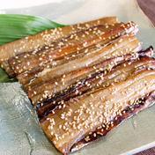 【柔らかい天日干し】タチウオみりん干し (3~5枚入り)×3パック 魚介類(その他魚介の加工品) 通販