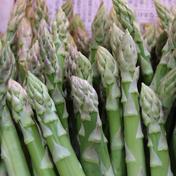 YOZE FARM 朝採り 色白の ふぞろいなアスパラガスたち S〜2Lサイズおまかせ1,000g 1,000g