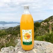 島恵自然農園 農薬不使用 無添加果汁100% はっさくジュース 3本 1000ml ×3本