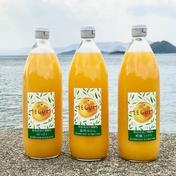島恵自然農園 【農薬不使用】3種類柑橘ジュース飲み比べ(甘夏、ミックス、はっさく) 1000ml 3本