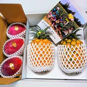 ますみ農園 パインとマンゴーのトロピカルセット パイン約2キロ(2〜3玉)、マンゴー約1キロ(2〜3玉) 果物(セット・詰め合わせ) 通販