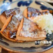 カルデラ鱒の塩麹仕立て 160g 熊本県 通販