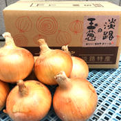 淡路島産(南あわじ市)玉ねぎ ターザン 10kg 10kg 兵庫県 通販