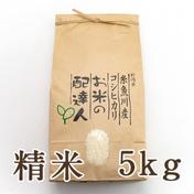 新潟県糸魚川産コシヒカリ 玄米 5kg 5kg 果物や野菜などのお取り寄せ宅配食材通販産地直送アウル